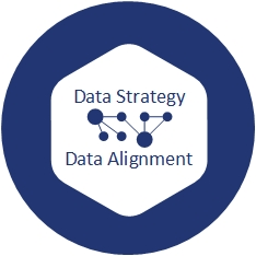 Data Strategy Data Alignment